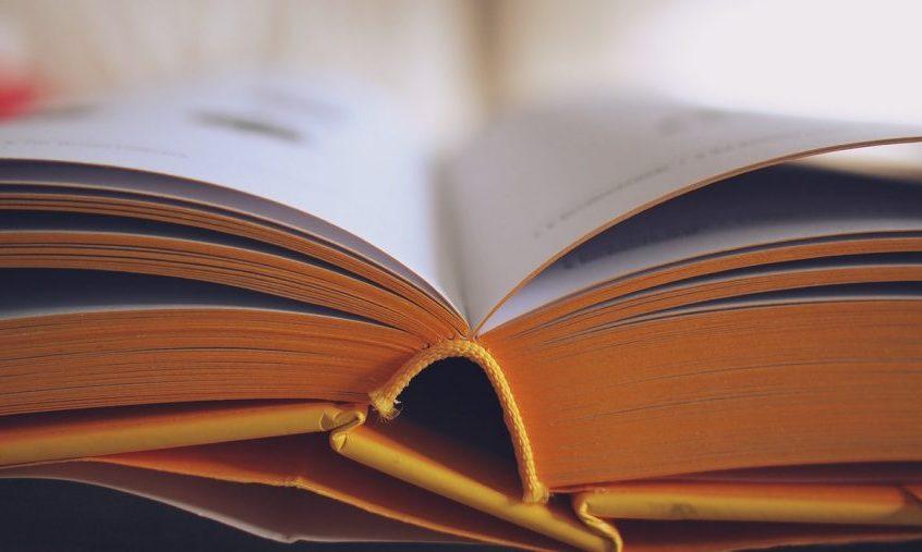 5 Reasons Why Lifelong Education Makes You Rich